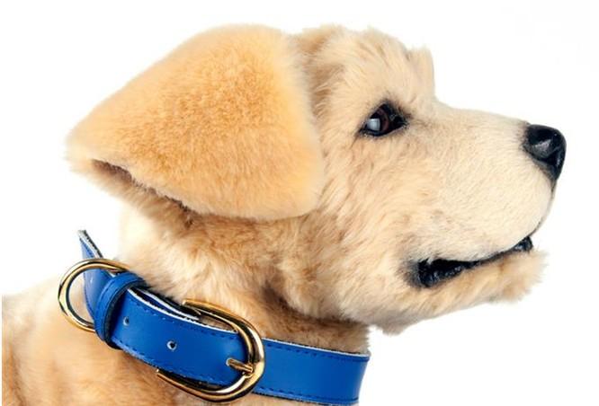 Tombot được thiết kế để trông và hành động giống như một con chó