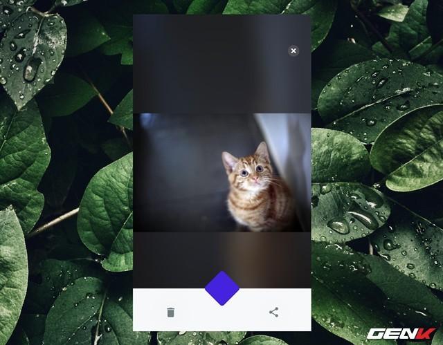 Cách ẩn hàng loạt ảnh riêng tư trên iPhone với Safe Pixel - Ảnh 13.