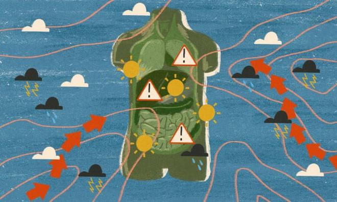 Biến đổi khí hậu đang gây tổn hại cho sức khỏe của chúng ta như thế nào? - Ảnh 1.