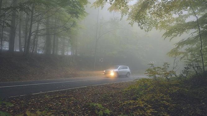 Lái xe gặp phải sương mù cần chú ý điều gì để đảm bảo an toàn? ảnh 2