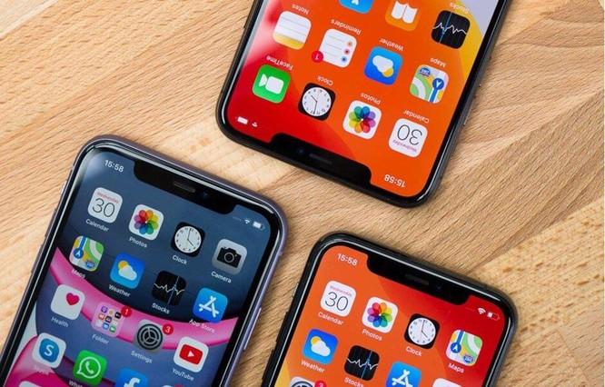 Apple từ chối nhiều ứng dụng Covid-19 giữa mùa dịch bệnh ảnh 1