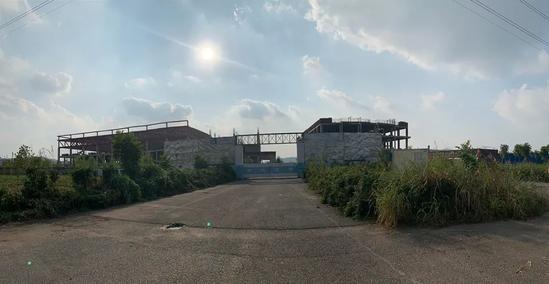 Cỏ dại mọc hai bên đường vào nhà máy Dekama ở Nam Kinh. Ảnh: Pan Ye.