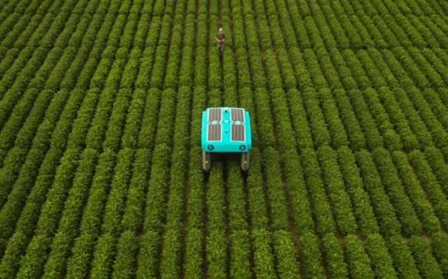 Robot thuộc dự án Mineral có thể đánh giá tình trạng cây trồng để đưa ra lời khuyên về cách chăm sóc cây