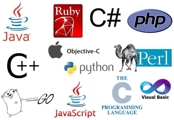 Tại sao lại có rất nhiều ngôn ngữ lập trình cùng tồn tại? ảnh 4
