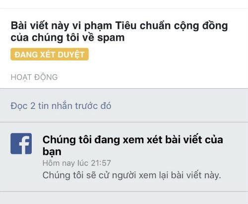 Vì sao người Việt bị cấm đăng bài bán hàng lên Facebook? ảnh 2