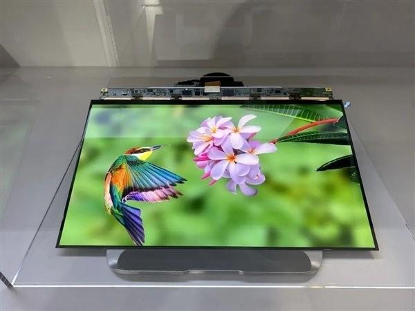 Trung Quốc bắt kịp Hàn Quốc về thị phần màn hình trong năm 2020 ảnh 1