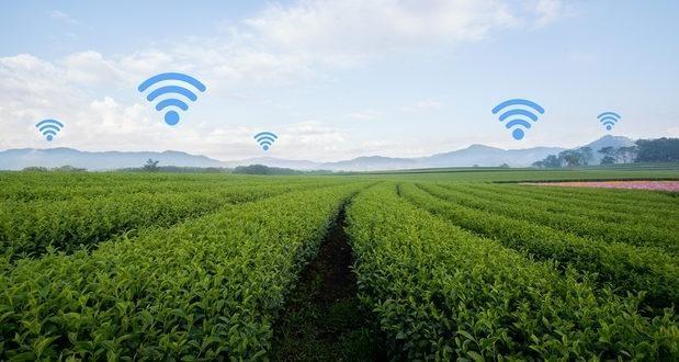 10 xu hướng định hình ngành công nghệ năm 2021 ảnh 8