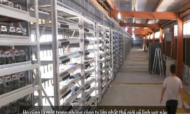 Thợ đào tiền ảo và 'cú sốc' Bitcoin ảnh 2