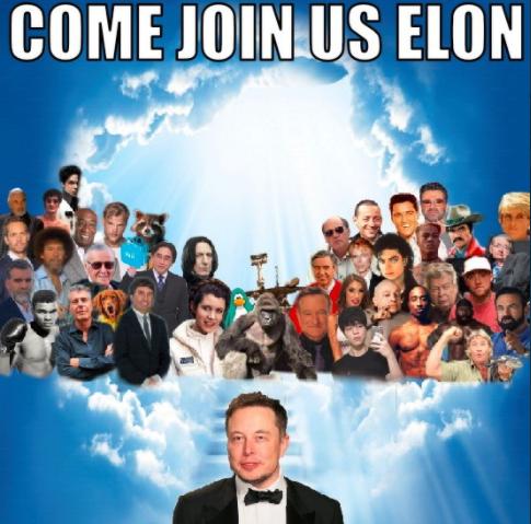 Loan tin Elon Musk qua đời để thao túng cổ phiếu Tesla ảnh 2