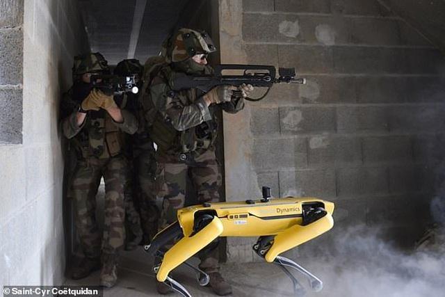 """Quân đội Pháp ôm mộng số hóa chiến trường với """"siêu khuyển robot"""" ảnh 1"""