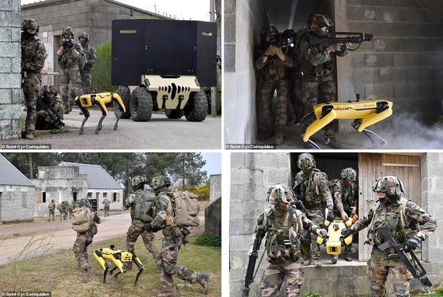"""Quân đội Pháp ôm mộng số hóa chiến trường với """"siêu khuyển robot"""" ảnh 2"""