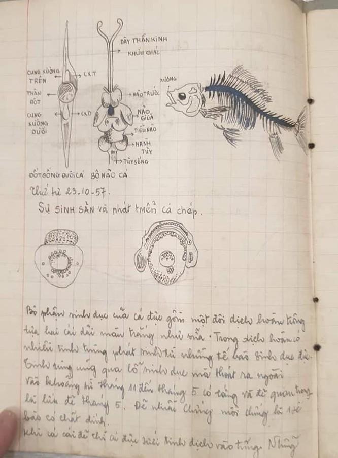 """Quyển vở Sinh học hơn 60 năm trước khiến dân mạng """"ngả mũ thán phục"""" ảnh 4"""