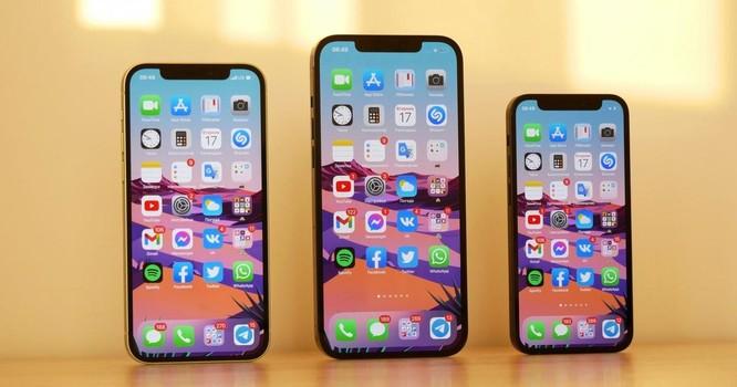 iPhone 12 liên tục giảm giá tại Việt Nam ảnh 1