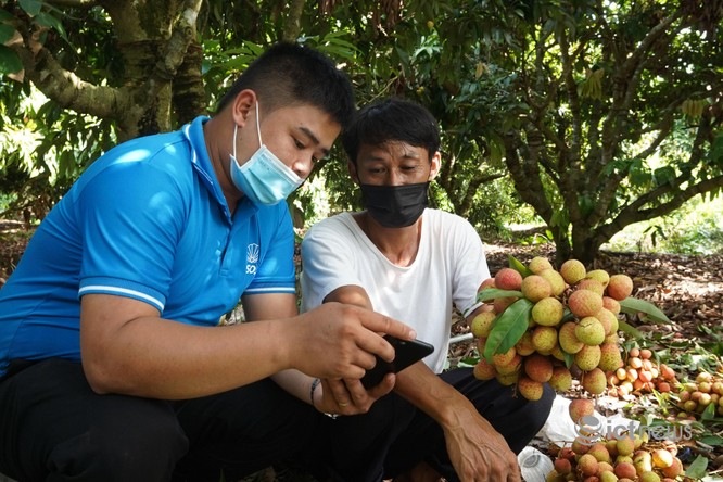 """Nông dân 5 tỉnh mang đặc sản lên bán tại """"Phiên chợ nông sản Việt trực tuyến"""" ảnh 3"""