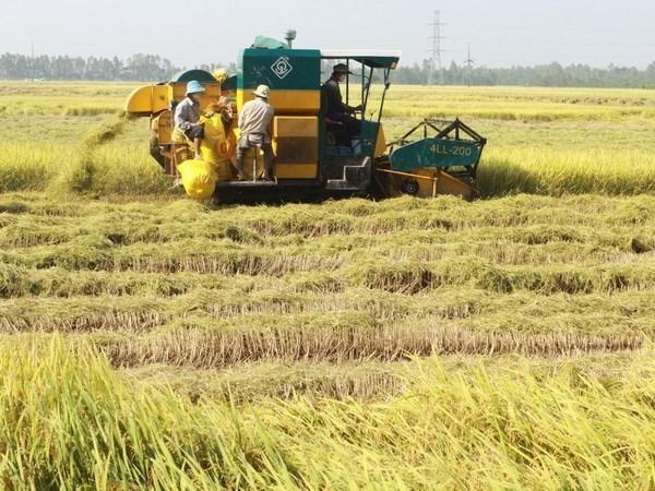 Ngành nông nghiệp An Giang cần hướng đến chuyển đổi số ảnh 2