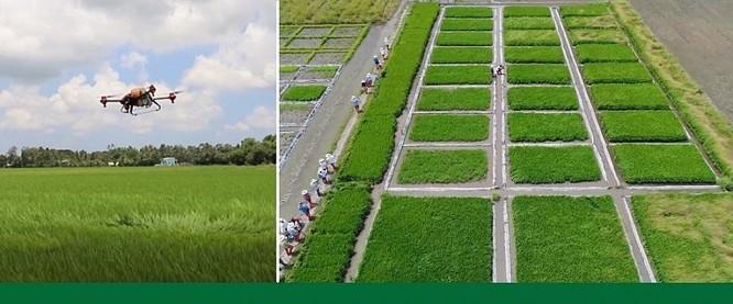 Hoàn thiện hệ sinh thái cho chuyển đổi số nông nghiệp Việt Nam ảnh 2