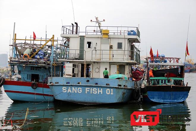 Tàu Sang Fish 01 buộc phải trả về nơi sản xuất vì những lỗi khiến ngư dân không thể chấp nhận