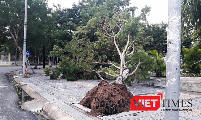 Đà Nẵng, bão số 4, ngập, đổ bộ, áp thấp, tàu thuyền, VietTimes