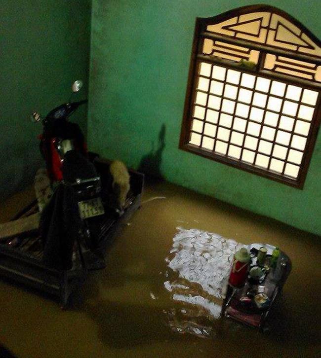 Thắt lòng, bức ảnh, rốn lũ, Bình Định, thiệt hại, mưa lũ, ngập chìm, VietTimes
