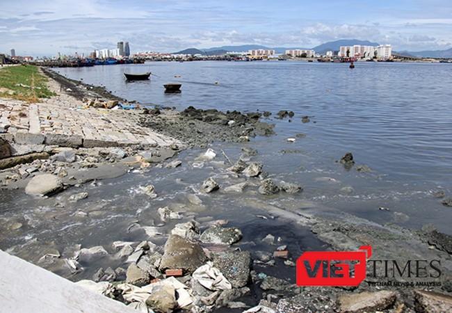 VietTimes, Đà Nẵng, tối hậu thư, ô nhiễm môi trường, Âu thuyền Thọ Quang, Cảng cá