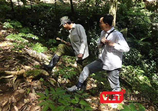 VietTimes, Thủ tướng Nguyễn Xuân Phúc, Sản phẩm Quốc gia, Sâm Ngọc Linh, Quảng Nam