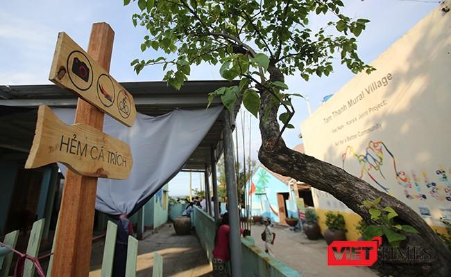 """Ngắm """"con đường thuyền thúng"""" độc đáo ở Quảng Nam ảnh 39"""