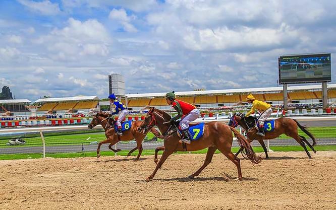 Đà nẵng sẽ có trường đua ngựa rộng 500.000m2 trên địa bàn phường Hòa Xuân, quận Cẩm Lệ (ảnh http://sporttotovietnam.com)