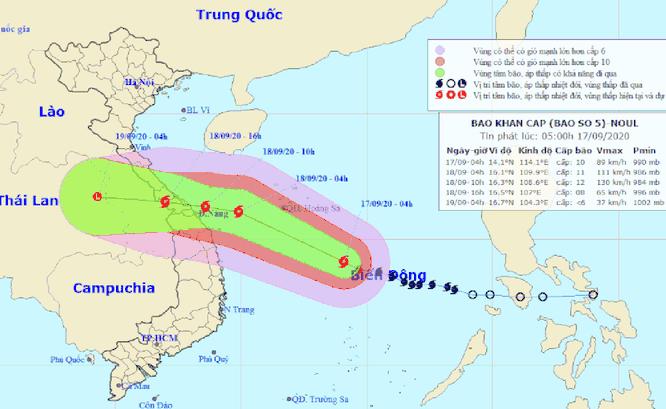 Bão số 5 cận kề, Đà Nẵng khẩn trương đưa tàu thuyền lên bờ tránh trú ảnh 1