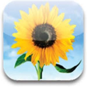 6 ứng dụng Android miễn phí ngày 31/7 ảnh 1