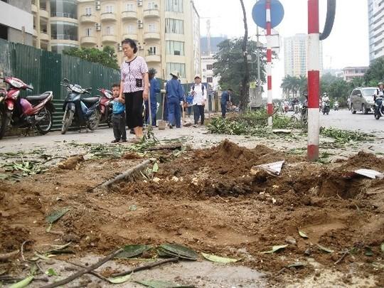 Các gốc cây to sau khi bị đào đi đã để lại những hố đất chưa được trồng cây thay thế, đất, cát rất bừa bộn