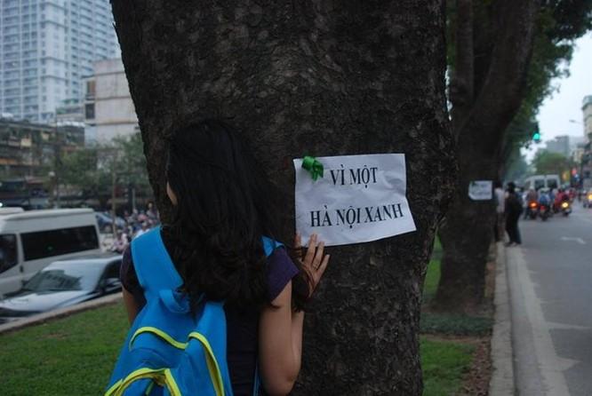 Người dân Hà Nội bày tỏ thái độ phản đối việc chặt và thay thế cây.