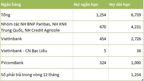 Ai là chủ khoản nợ gần 8.000 tỷ của Đạm Cà Mau? ảnh 1
