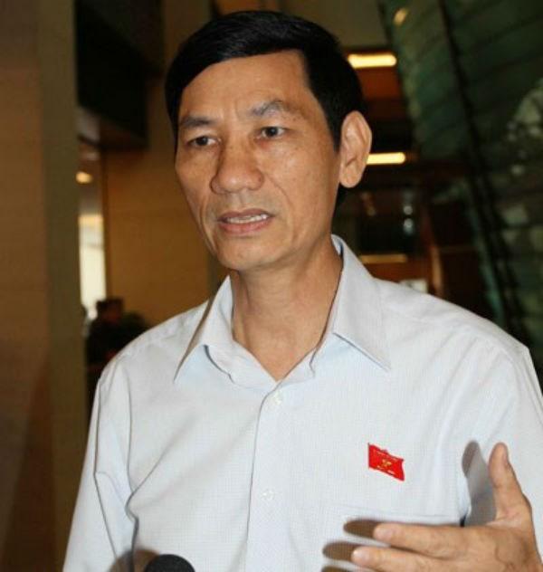 """Dự án sân bay Long Thành: Đại biểu Quốc hội """"hứa"""" sẽ... bấm nút ảnh 4"""