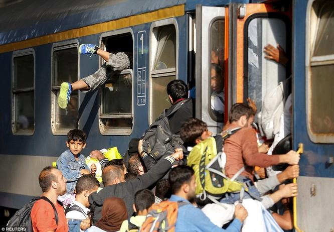 Kinh hoàng làn sóng dân chạy loạn tìm cách tràn vào châu Âu ảnh 11
