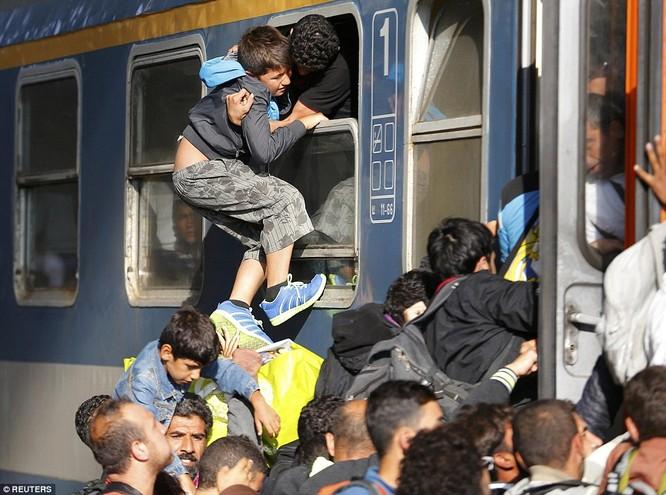 Kinh hoàng làn sóng dân chạy loạn tìm cách tràn vào châu Âu ảnh 12