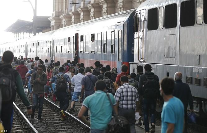 Kinh hoàng làn sóng dân chạy loạn tìm cách tràn vào châu Âu ảnh 15