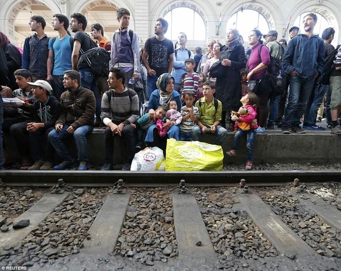Kinh hoàng làn sóng dân chạy loạn tìm cách tràn vào châu Âu ảnh 16