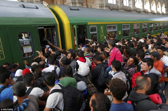 Kinh hoàng làn sóng dân chạy loạn tìm cách tràn vào châu Âu ảnh 17