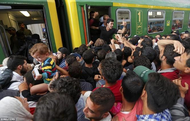 Kinh hoàng làn sóng dân chạy loạn tìm cách tràn vào châu Âu ảnh 18