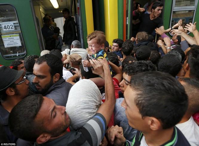 Kinh hoàng làn sóng dân chạy loạn tìm cách tràn vào châu Âu ảnh 21