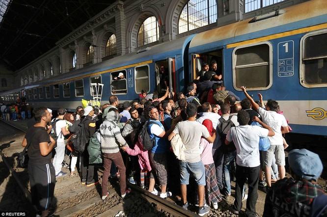 Kinh hoàng làn sóng dân chạy loạn tìm cách tràn vào châu Âu ảnh 23