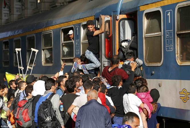 Kinh hoàng làn sóng dân chạy loạn tìm cách tràn vào châu Âu ảnh 25