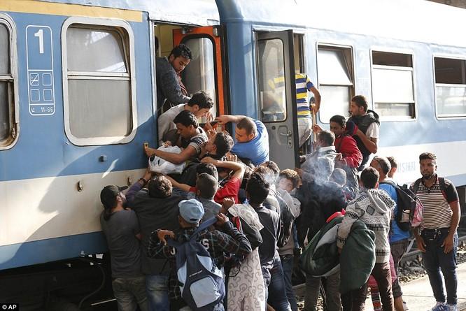 Kinh hoàng làn sóng dân chạy loạn tìm cách tràn vào châu Âu ảnh 26