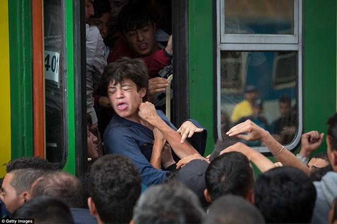 Kinh hoàng làn sóng dân chạy loạn tìm cách tràn vào châu Âu ảnh 8