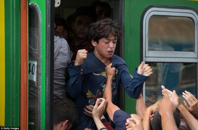 Kinh hoàng làn sóng dân chạy loạn tìm cách tràn vào châu Âu ảnh 10