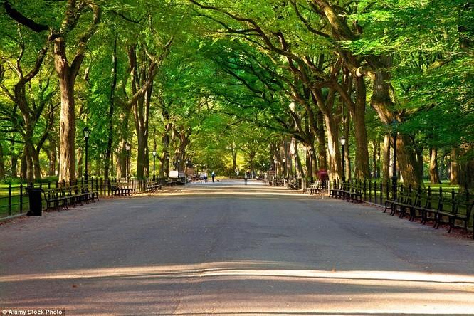 Công viên Trung tâm Manhattan, New York, Mỹ