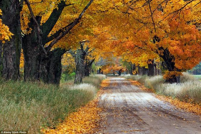 Ai cũng muốn quên lối về khi đặt chân tới Ludington, Michigan, Mỹ