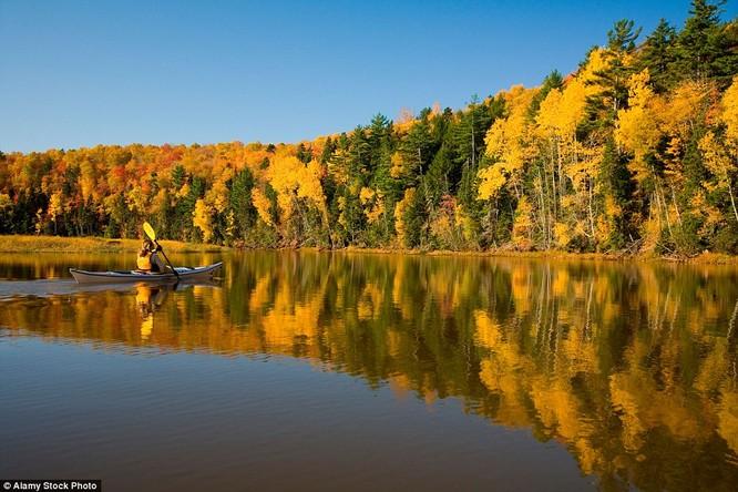 Không gì tuyệt hơn khi bơi thuyền trên sông ở đảo Hoàng tử Edward, Canada
