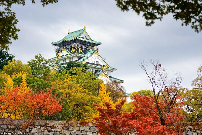 Ngôi đền cổ đón thu ở Osaka, Nhật Bản