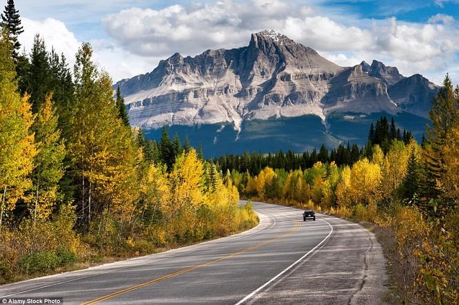 Cảnh tượng hùng vĩ mỗi độ thu về ở Rockies, Canada